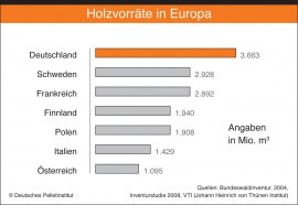 5-holzvorrat-in-europa