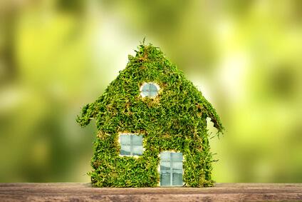 Ökologisch bauen ist voll im Trend